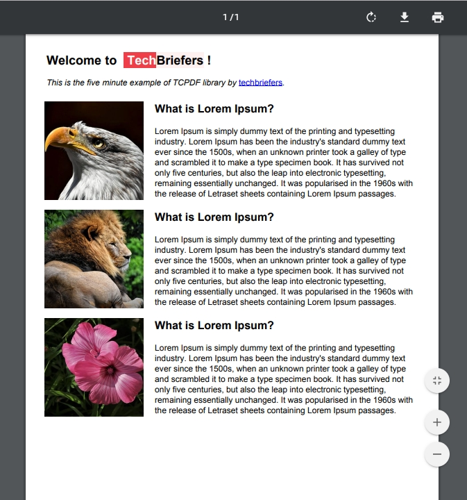 Fine layout PDF created by PHP with TCPDF techbriefers